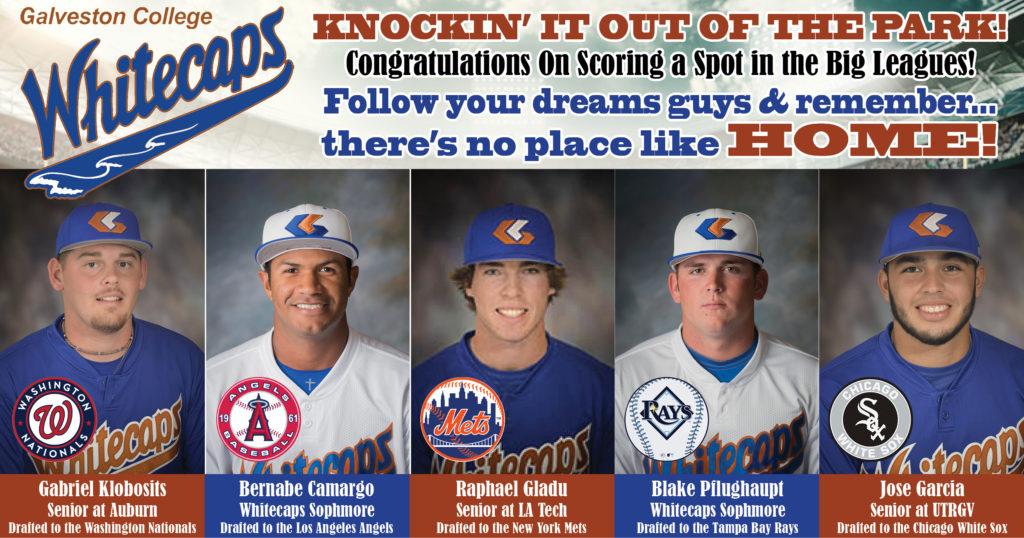 2017 MLB Draft Picks from GC