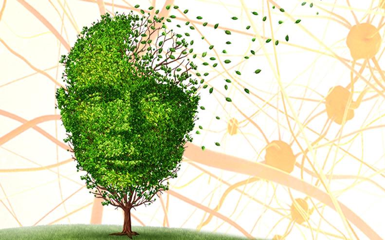 Galveston College Lecture Series: The Brain